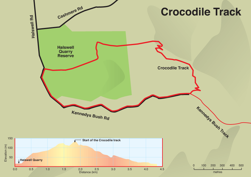 crocodile map